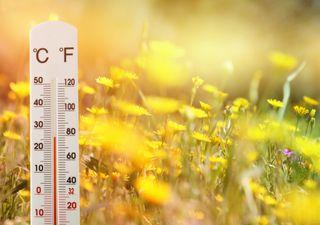 Neuer Jahrhundertrekord: Extreme Februarwärme geht weiter!