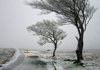 Weather for the week: windy, showery, and snowy for some