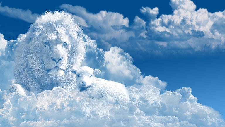 Lion and lamb.