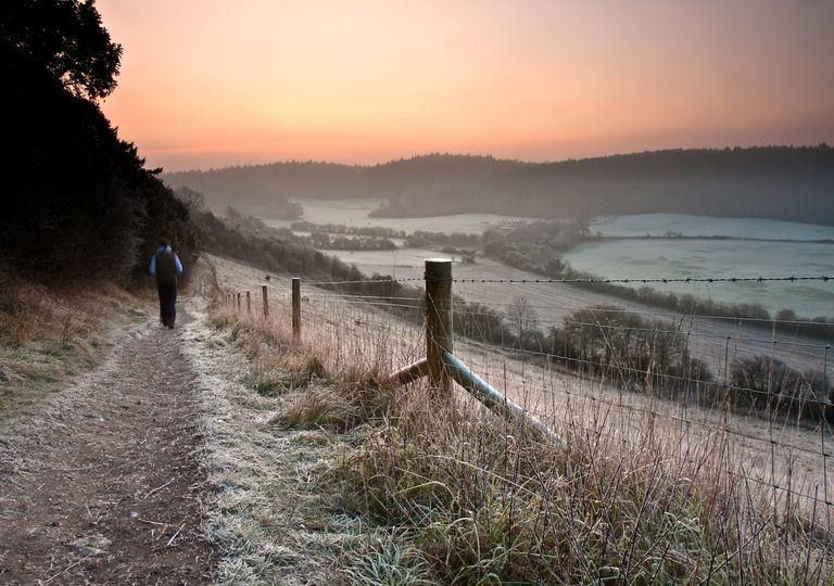 Frosty landscape.