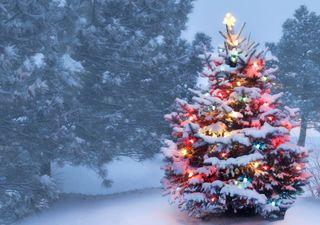 Weiße Weihnachten 2020: Die erste Prognose!