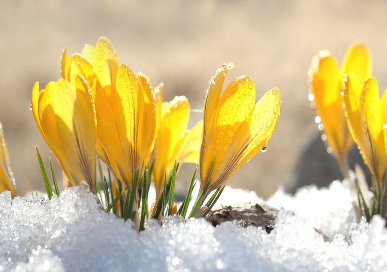Frühlingsluft?