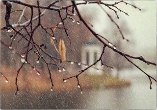 Sturm, Starkregen und Schnee! Der Herbst schlägt voll durch!