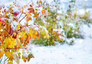 Winter mit Schnee im Süden! Wann wird es wieder wärmer?