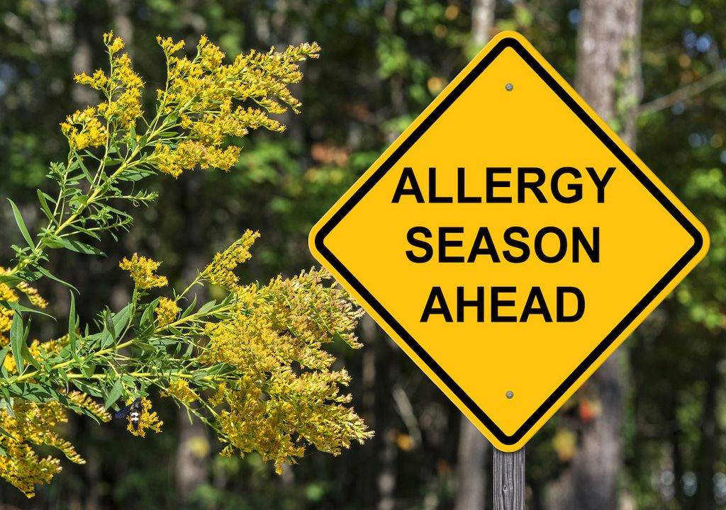 The grass pollen allergy season is set to peak from the beginning of June and then again in July.