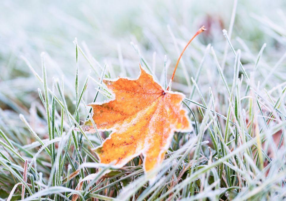 Kalte Tage