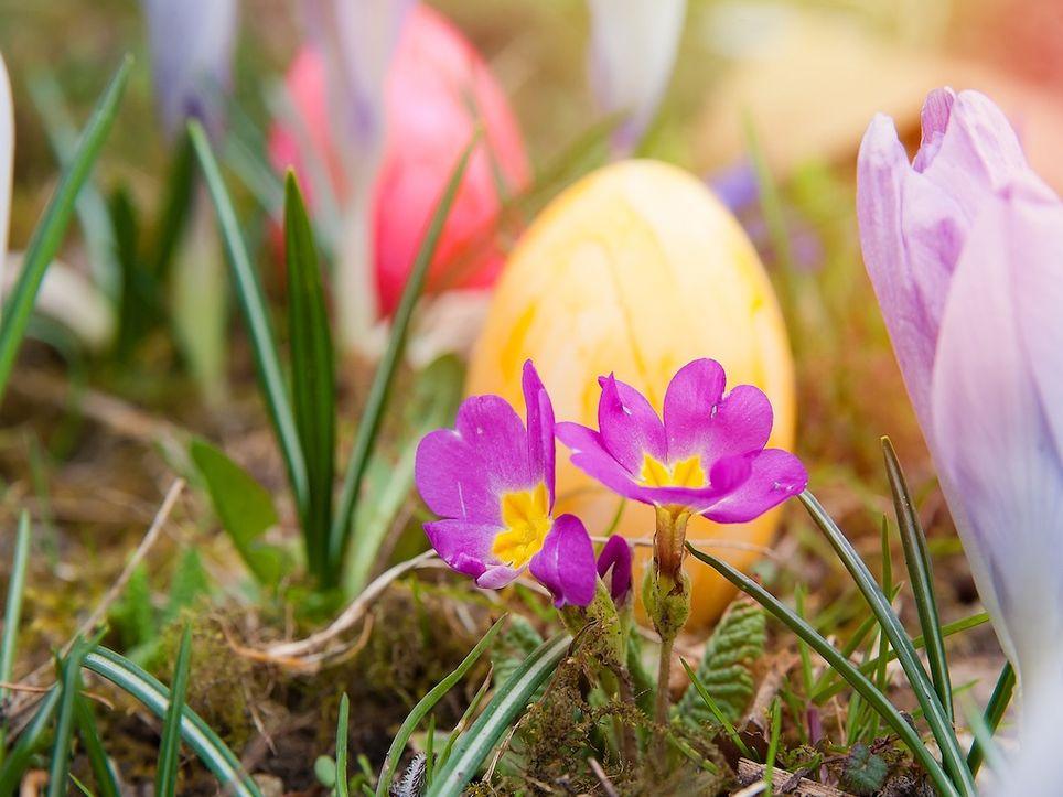 Ostern bei Sommerwetter?