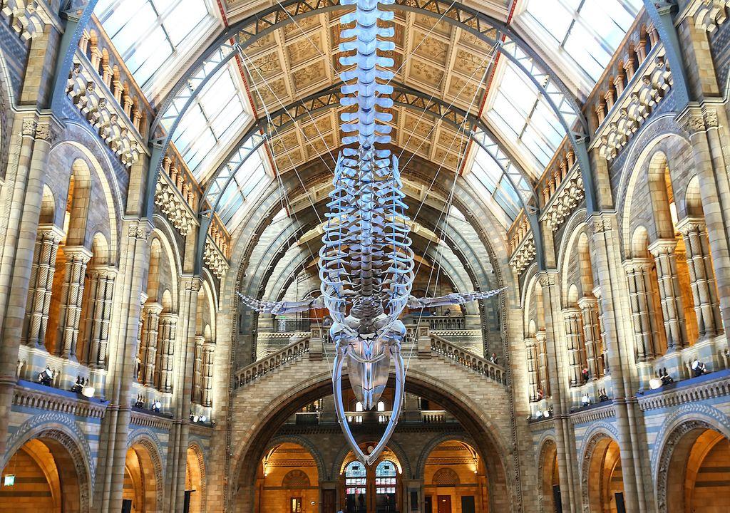 Main hall of Natural History Museum, London.