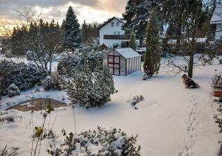 Kältepeitsche wieder da: Schnee und Frost am ersten Märzwochenende!