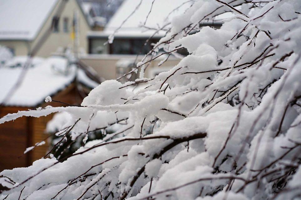 Februar Langfristtrend kalt