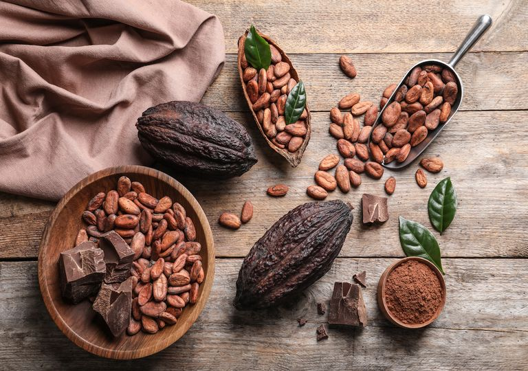 Cocoa fruits, pods and seeds.