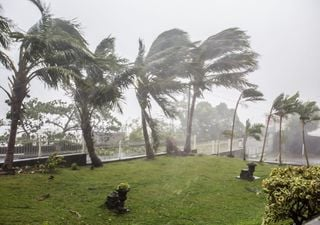 Zyklon Niran: Orkanböen bis 200 km/h in Neukaledonien!