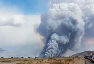 Incendios. ¿Están aumentando y son ahora más graves? Últimas noticias