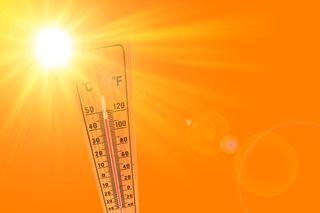 Ola de calor: todas las noticias