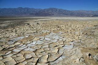 Sequía: todas las noticias